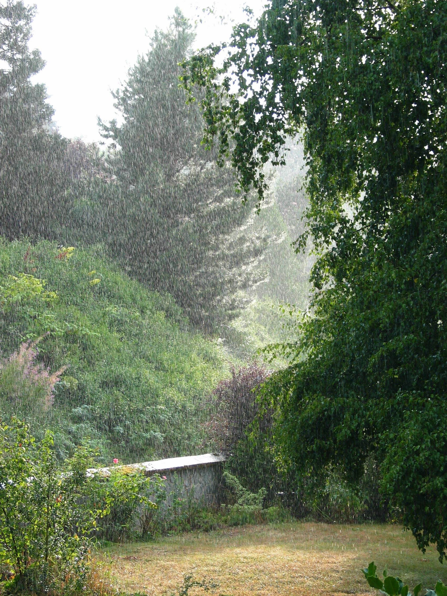 http://upload.wikimedia.org/wikipedia/commons/9/9b/Rain_falling.JPG