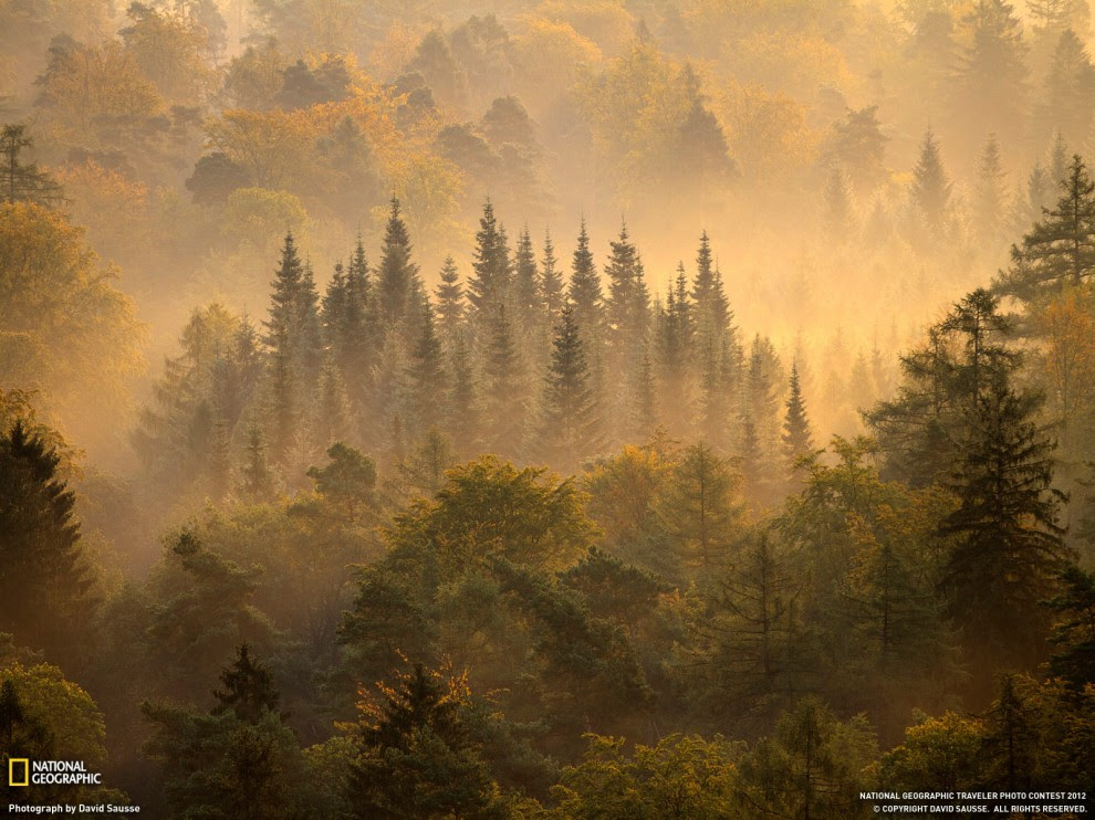28 990x742 Desktop wallpapers from National Geographic for June 2012