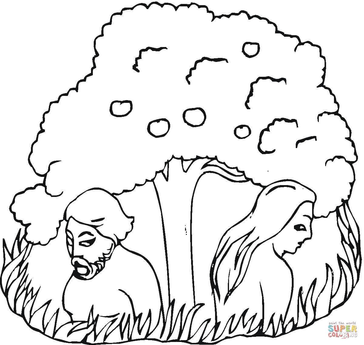 Coloriages Adam Et Eve Coloriages Gratuits à Imprimer