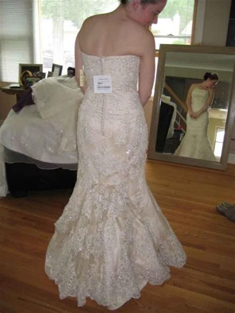 568 best images about Bustles on Pinterest   Tulle dress