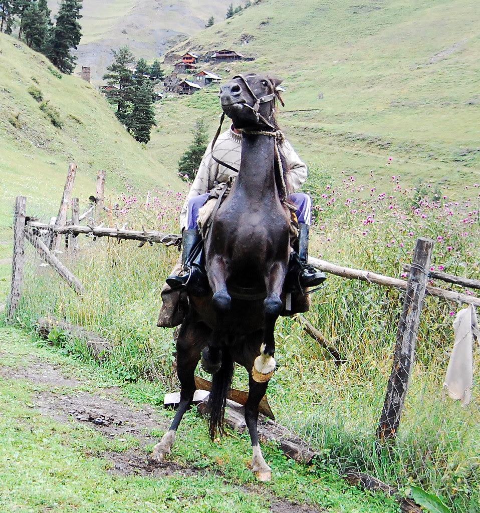 tuscheti Mirza on Horseback