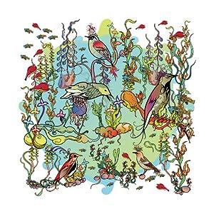 John Zorn - Dreamers: Gentle Side cover
