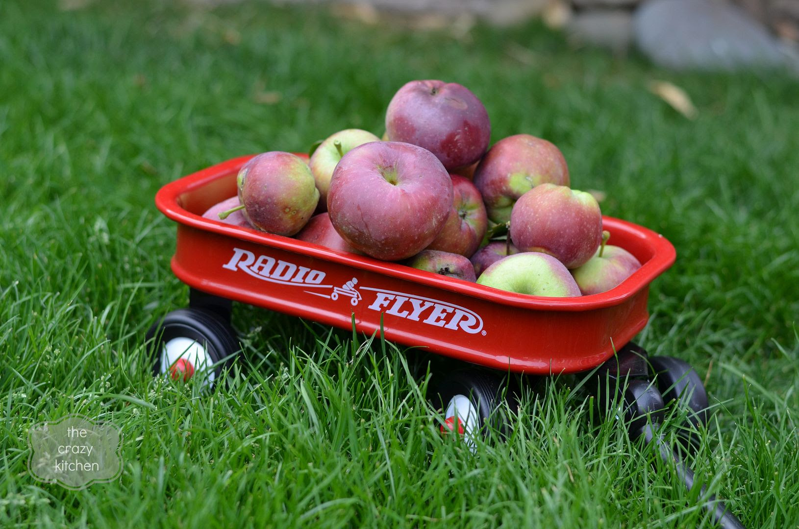 Apple Radio Flyer Cart