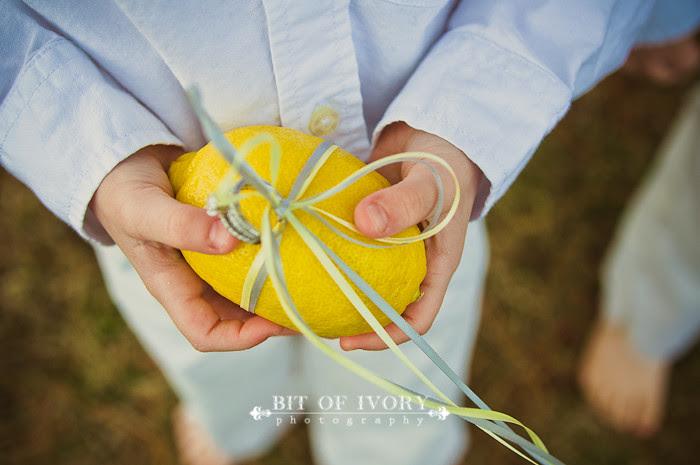 yellow lemon ring pillows