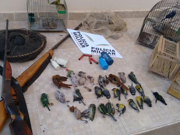 Pássaros foram encontrados abatidos (Foto: Polícia Militar/Divulgação)