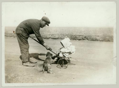 Tiny baby stroller