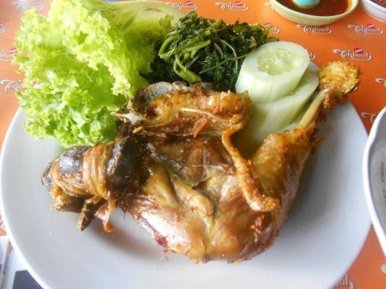 Mewarnai Paha Ayam V Warna