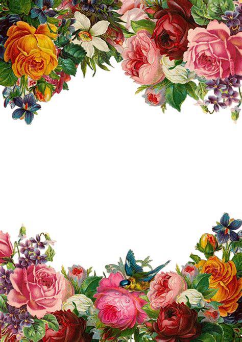 gambar bunga keren png gambar bunga