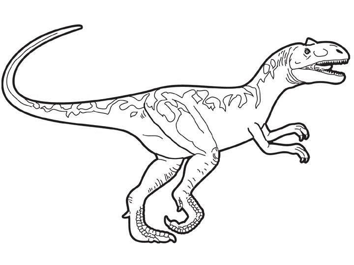 Dibujos Para Colorear Tyrannosaurus Rex Eshellokidscom