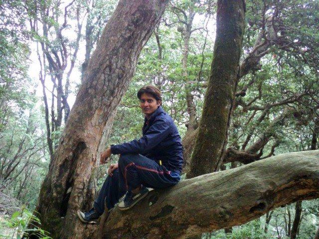 Junglee in the jungle…