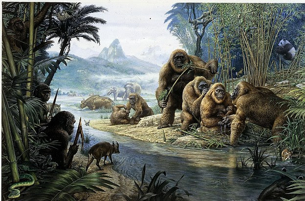 Mystical: Hundreds of explorers, theorists and fantasists have spent their lives searching for the infamous 'big-foot'