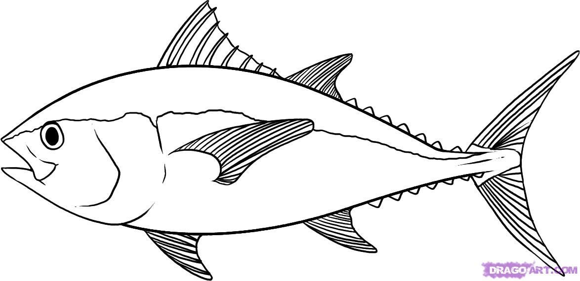 Real Fish Coloring Pages - Coloring Home