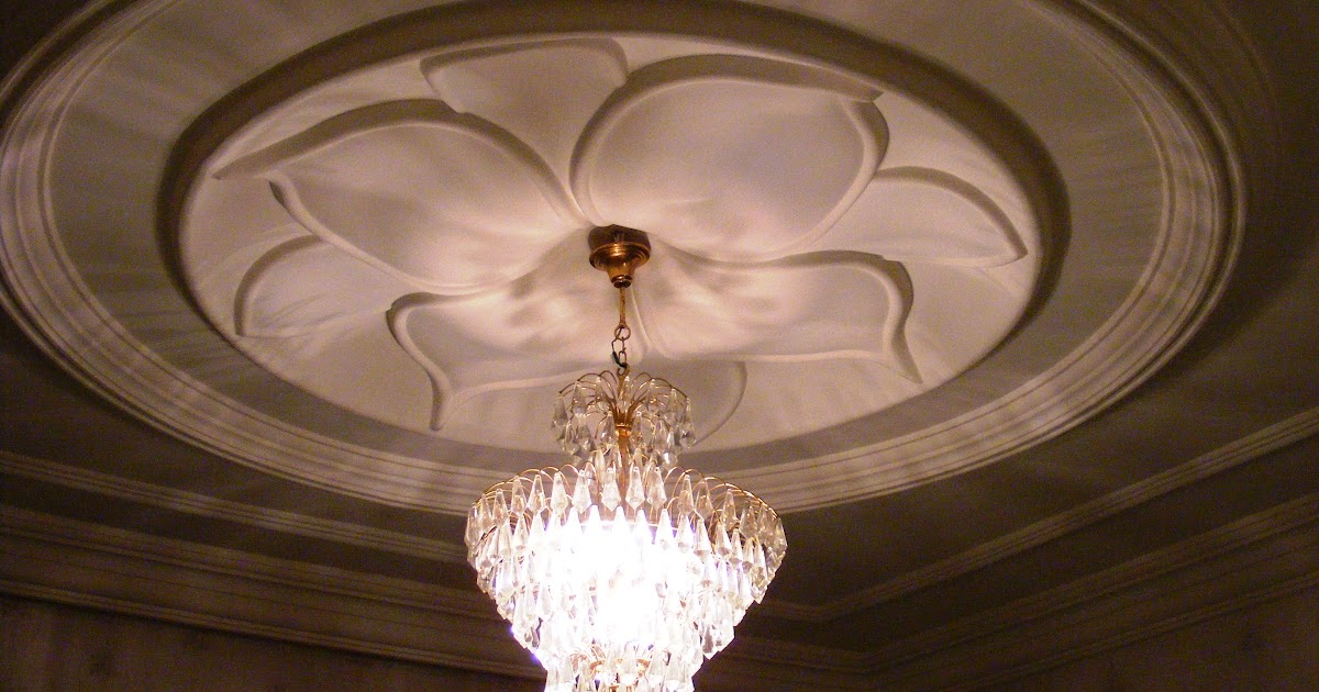New Ceiling Flower Designs Images Top Collection Of Different Types Of Flowers In The Images Hd