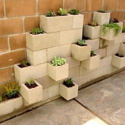 cinder block succulents