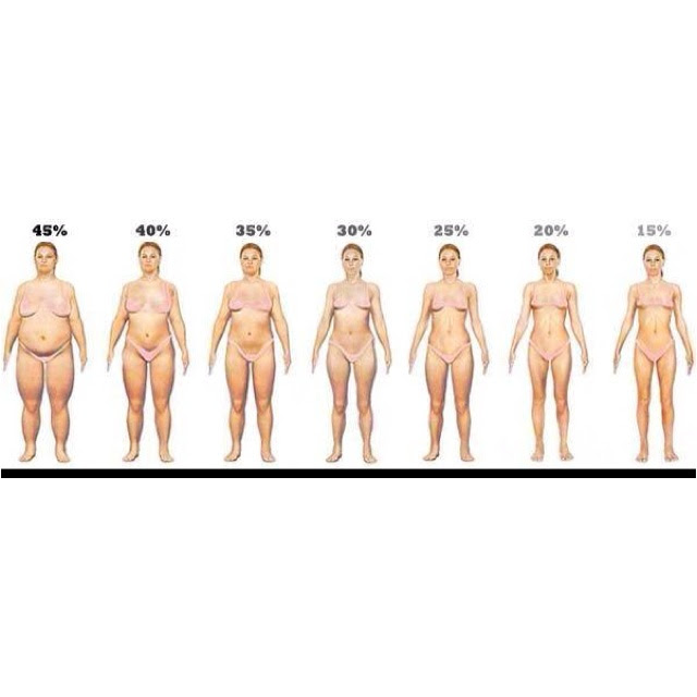 how to estimate body fat percentage from bmi