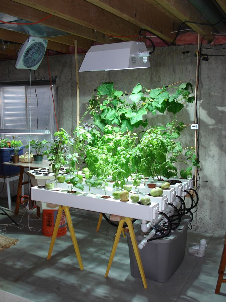Growco Indoor Garden Supply Indoor hydroponic garden plants asian aquaponics plans indoor hydroponic garden under hid metal halide plant grow light workwithnaturefo