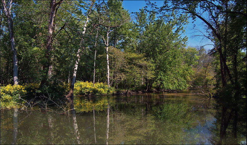 Reflections on the Little Calumet River
