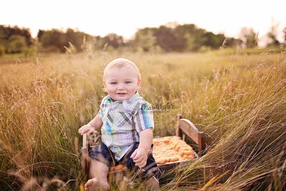 Normal Baby El Paso Child Photographer One Year Baby Session And