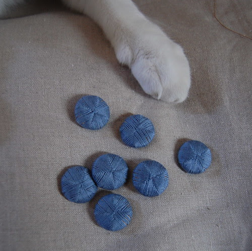 Death's Head Buttons, With Paw