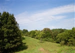 West Virginia, Roane County, 7.74 Acre Heritage Hollow, TERMS $345/Month