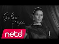 Gülay - Özledim - netd müzik