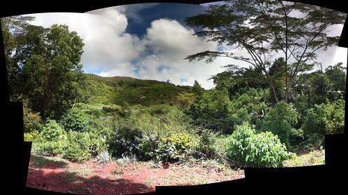 week 18, 2012: panorama 2