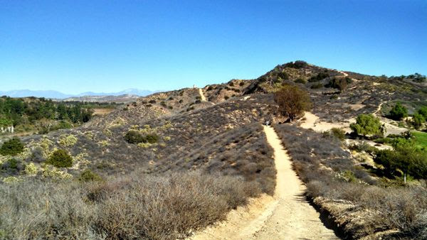 A view from the trail Nancy and I used for our hike in Orange County, CA...on November 17, 2014.