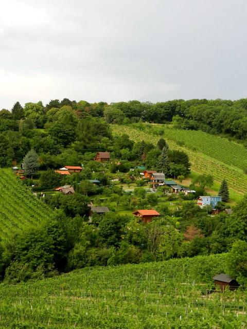 Kahlenberg_2012_18