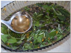 Risultati immagini per erbe bioregionali