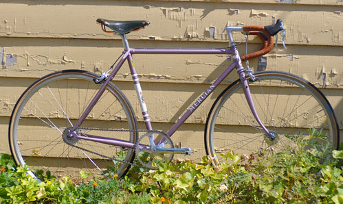 Mercian with Freewheel, Altered Gearing and Grand Bois Cerfs