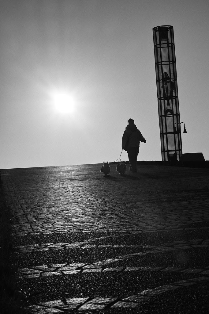2014.01.01 - DP3 Merrill Sunrise