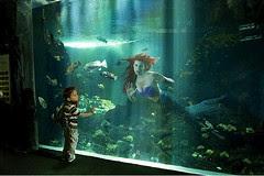 Ariel by Dina Goldstein