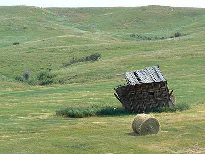 cabane dans la prairie.jpg