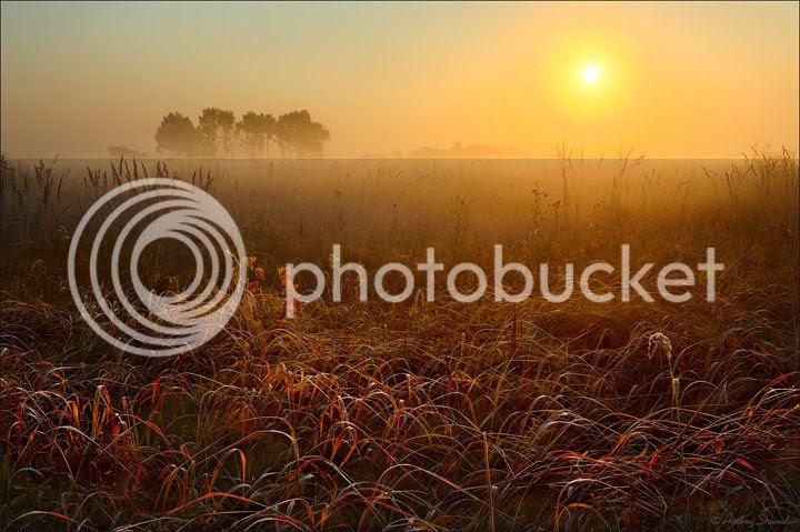 photo Andrey59-4_zps8e00b1b0.jpg