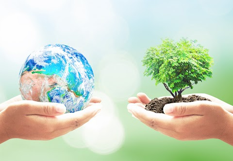 World Environment Day 2021 - M35buhfbdsvdlm / Every year on june 5, world environment day is observed across the globe with an aim to reinforce and sustain the awareness around environmental action.