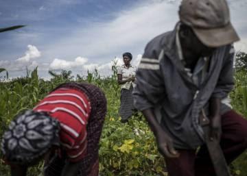 Transformación rural inclusiva contra el hambre