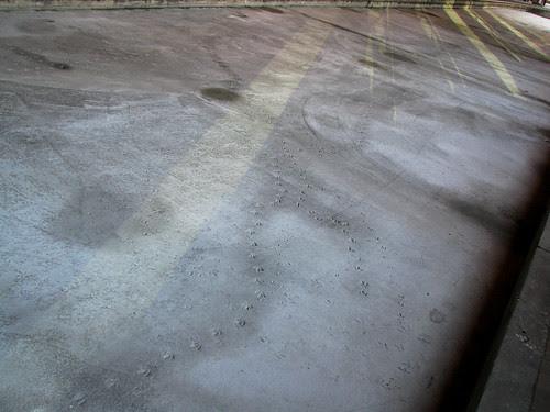 tracks and beams