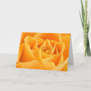 Orange Rose Card card