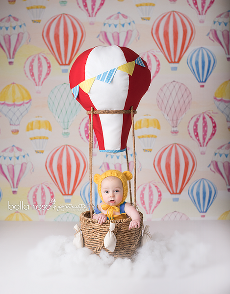 Hot Air Balloons Photography Backdrop Will Take You Away Hsd
