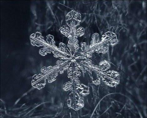 nieve, copo de nieve