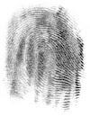 Mengenali Sidik Jari sebagai Identitas Pribadi dan Unik