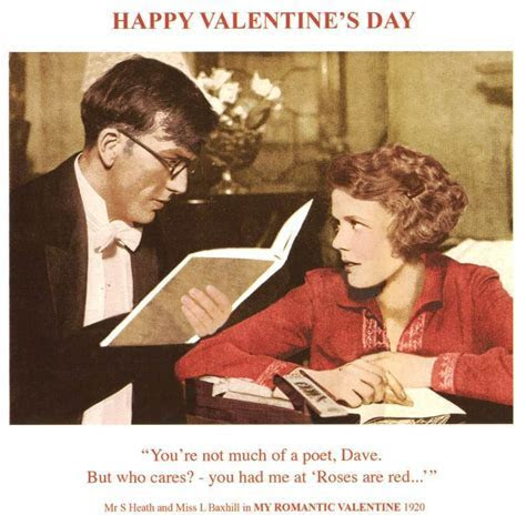 Funny Roses Are Red Happy Valentine's Day Greeting Card