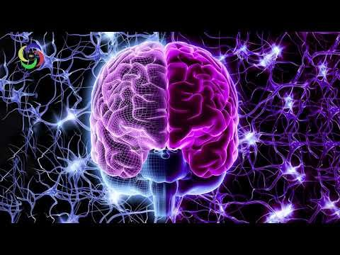 Left Brain / Right Brain | Hemispheric Synchronization Formula | Ambidexterity | 360Hz | Pink Noise