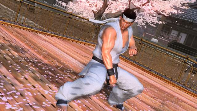 http://www.fightersgeneration.com/characters/sega13.jpe