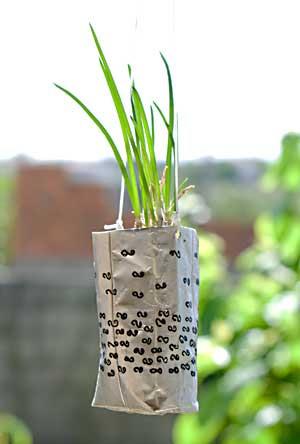 Vaso suspenso para a cebolinha