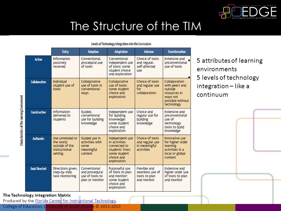 Image result for TIMS rubric image