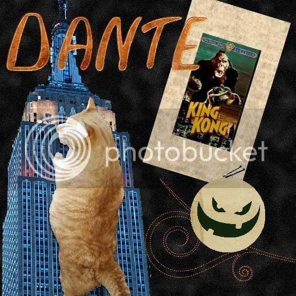 tabby cat,Howl-N-Scream