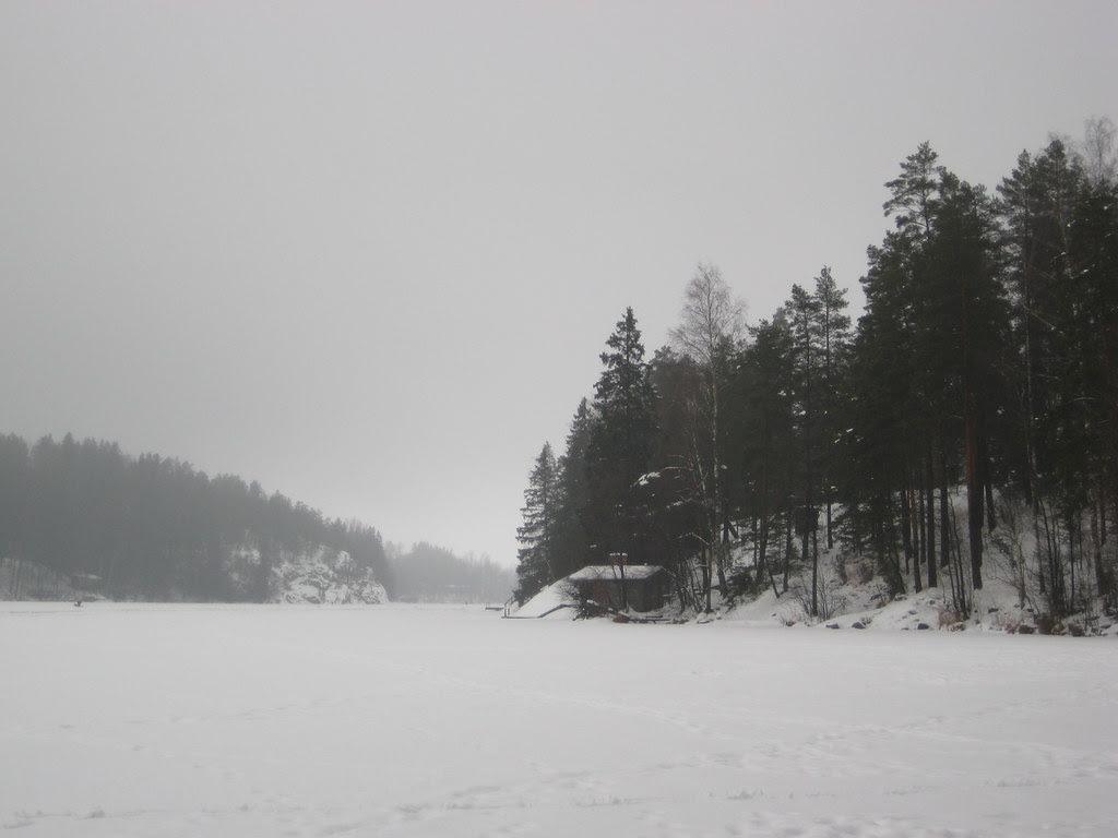 Vista desde el lago