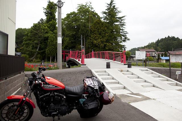 Harley Davidson XL 883R 041