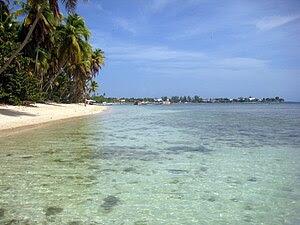 English: Beach in Tobago